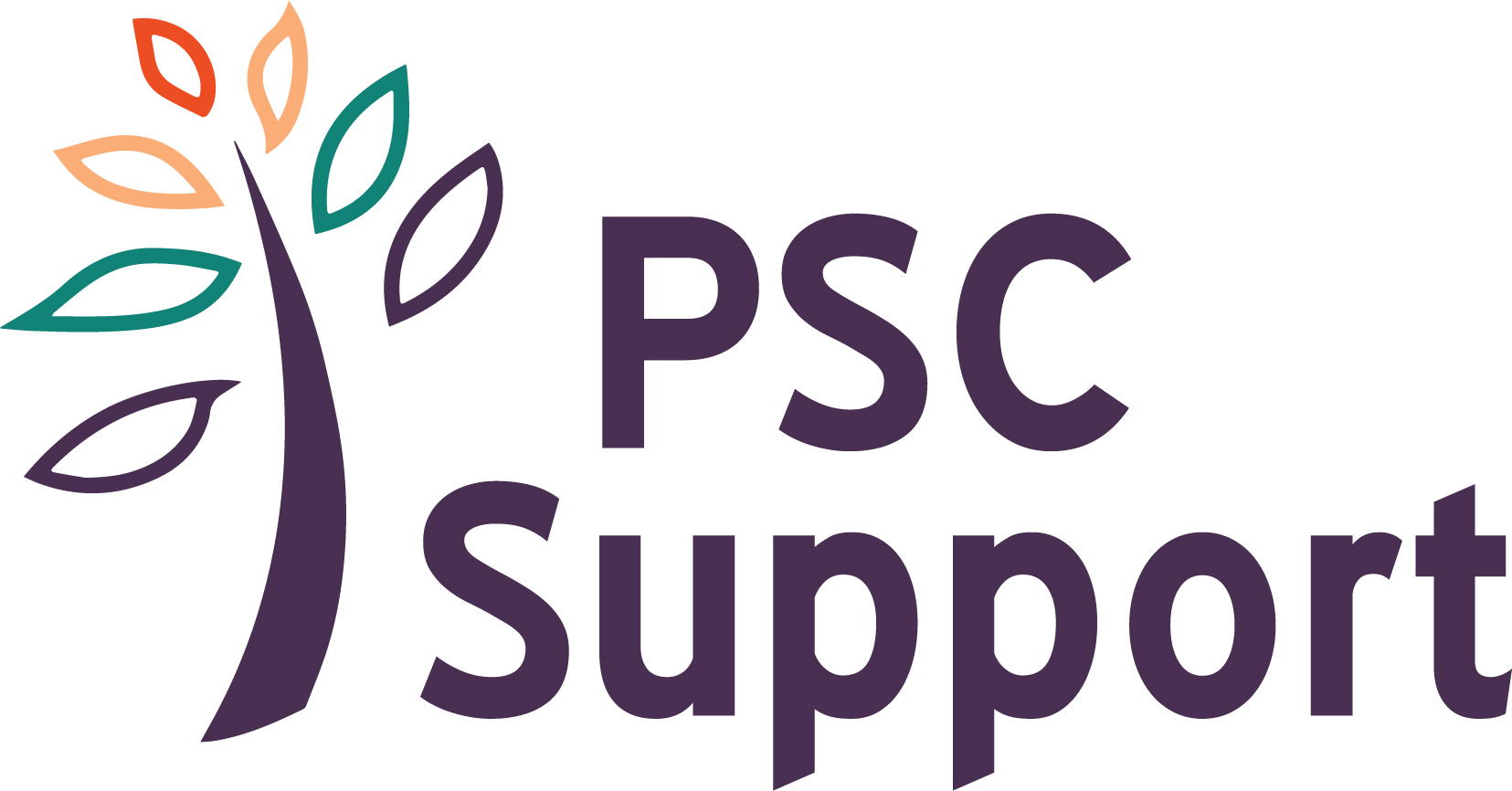 psc_support_logo_colour_2020.jpg